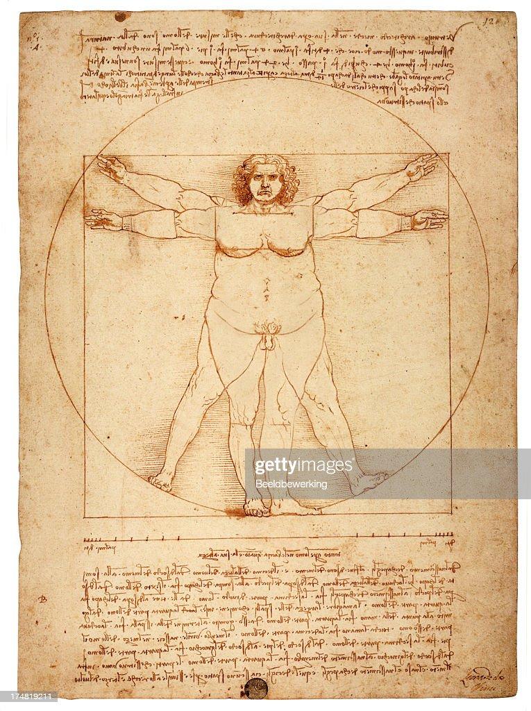 Overweight figure in the circle (Vitruvian Man) : stock illustration