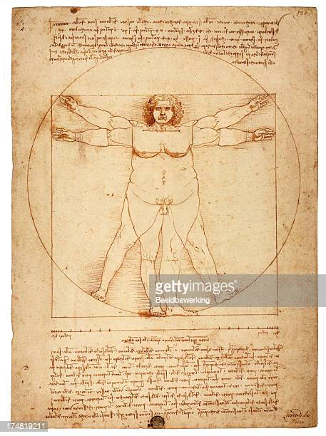 overweight figure in the circle (vitruvian man) - body conscious stock illustrations, clip art, cartoons, & icons