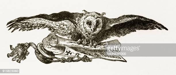 Uilen vliegen en uitvoering van een Scroll gravure, Circa 1892