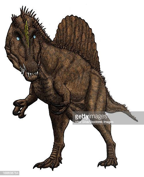 oxalaia, huge brazilian spinosaurid from the late cretaceous period. - animal spine stock illustrations, clip art, cartoons, & icons