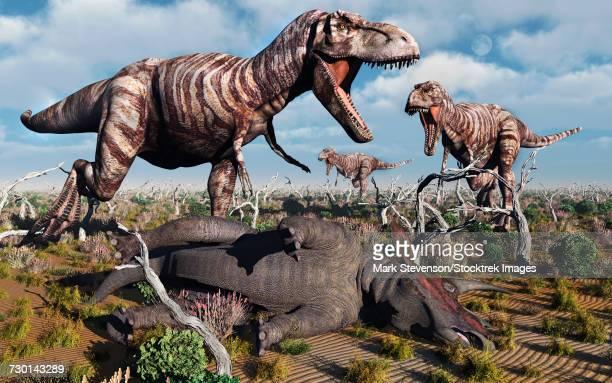 ilustraciones, imágenes clip art, dibujos animados e iconos de stock de a pack of carnivorous t-rex dinosaurs with their freshly killed triceratops. - paleobiología
