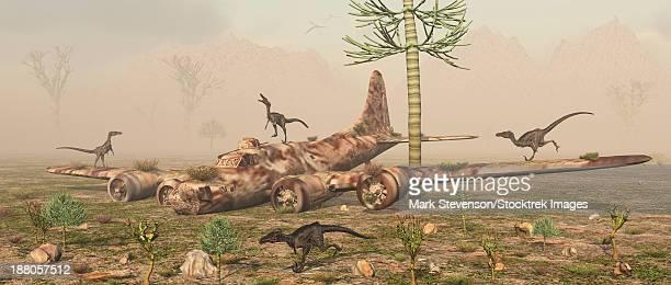 illustrations, cliparts, dessins animés et icônes de a pack of curious velociraptors exploring the wreckage of a world war ii b-17 bomber plane. - catastrophe aérienne
