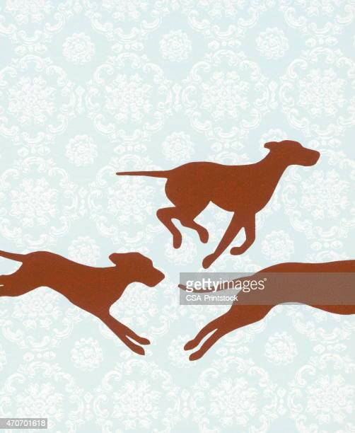 pack of dogs - pack of dogs stock illustrations