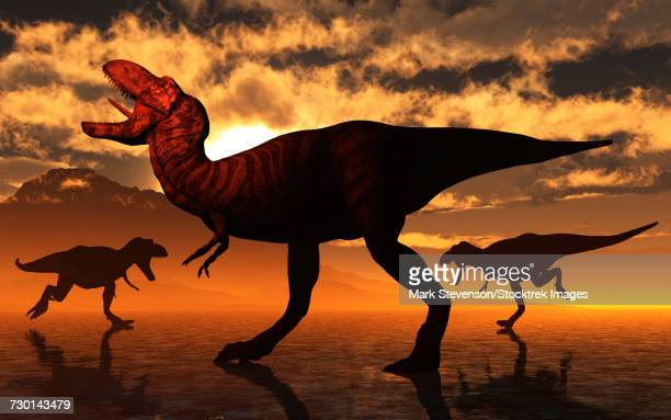 A pack of Tyrannosaurus rex dinosaurs hunting for food.