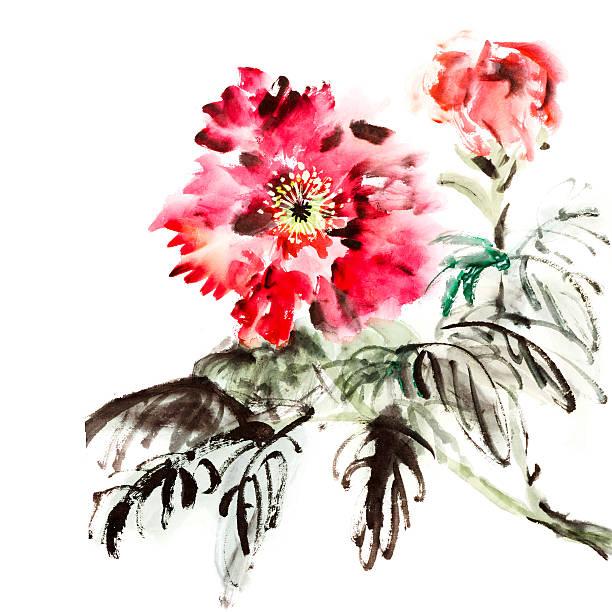 Paeonia Flowers Wall Art