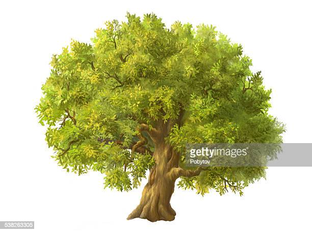 painted a large green tree - tree trunk stock illustrations, clip art, cartoons, & icons