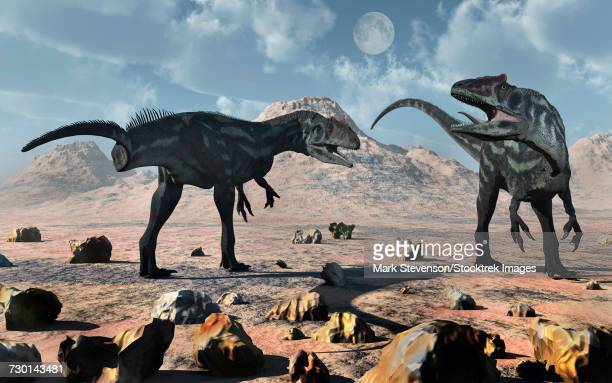 A pair of Allosaurus dinosaurs during Earths Jurassic period.