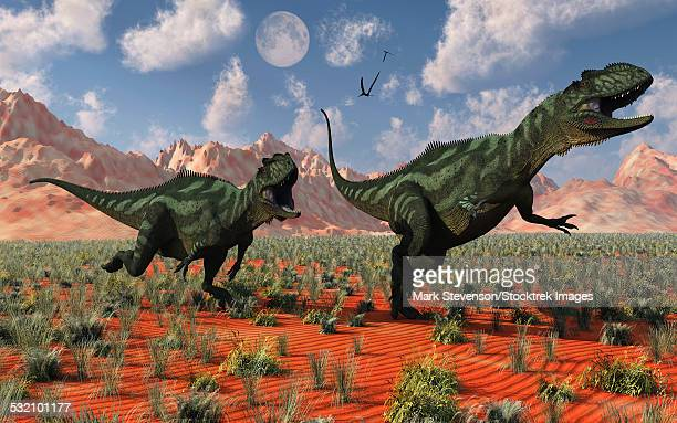ilustraciones, imágenes clip art, dibujos animados e iconos de stock de a pair of carnivorous yangchuanosaurus dinosaurs hunting during the jurassic period, in what is modern day china. - paleobiología