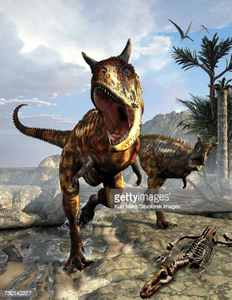 A pair of Carnotaurus dinosaurs hunting for food.