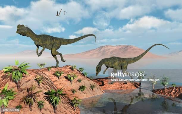 ilustraciones, imágenes clip art, dibujos animados e iconos de stock de a pair of dilophosaurus dinosaurs during earths jurassic period. - paleozoología