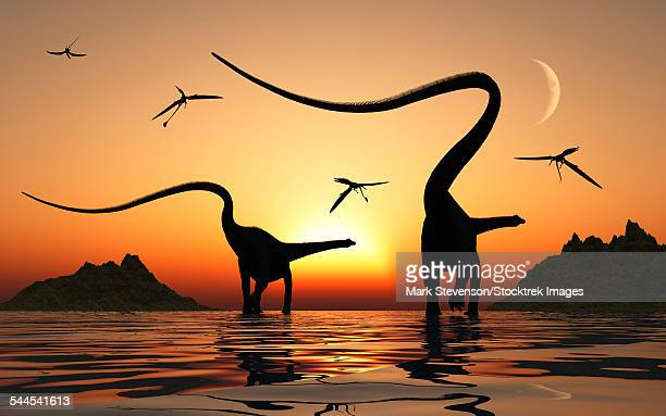A pair of Diplodocus sauropod dinosaurs during Earths Jurassic Period of time.