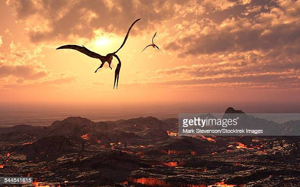 a pair of giant quetzalcoatlus flying over a volcanic landscape during earths cretaceous period. - molten stock illustrations, clip art, cartoons, & icons