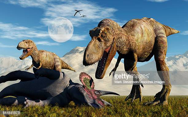 A pair of Tyrannosaurus Rex dinosaurs ready to make a meal of a dead Triceratops.