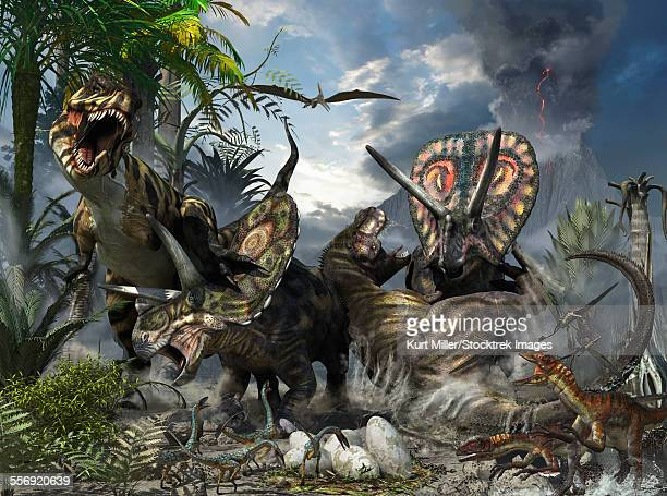 illustrations, cliparts, dessins animés et icônes de a pair of tyrannosaurus rex fighting with a family of torosaurus who are protecting their eggs. - chasse aux oeufs