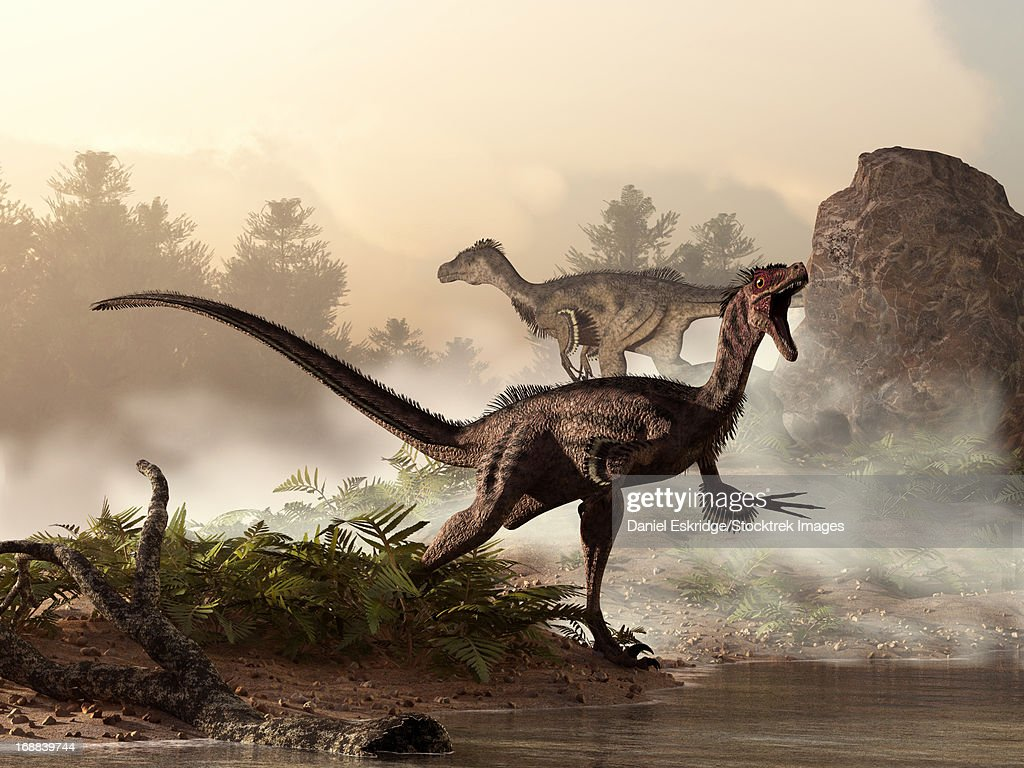 A pair of velociraptors patrol the shore of an ancient lake looking for their next meal. : stock illustration