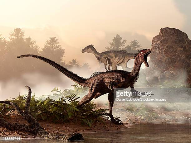 bildbanksillustrationer, clip art samt tecknat material och ikoner med a pair of velociraptors patrol the shore of an ancient lake looking for their next meal. - paleolitico