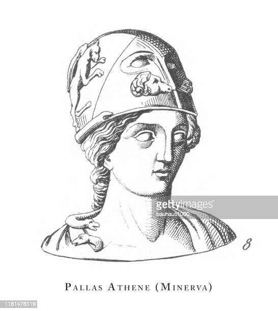 pallas athene (minerva), aphrodite and other goddesses and gods engraving antique illustration, published 1851 - greek mythology stock illustrations