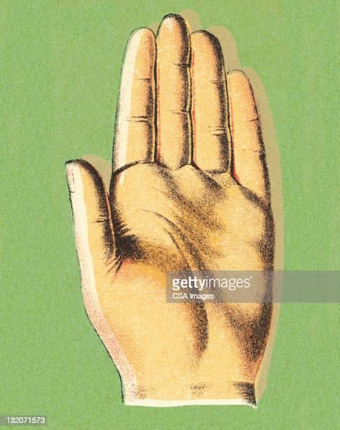 ヤシの手 - 宣誓点のイラスト素材/クリップアート素材/マンガ素材/アイコン素材