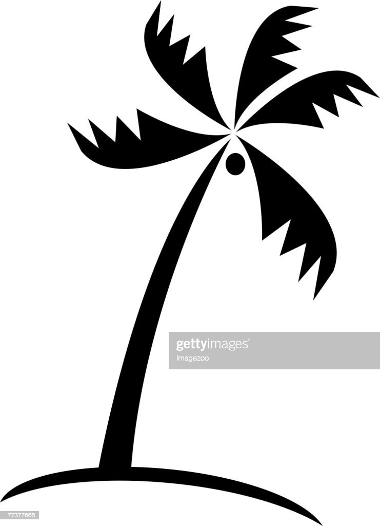 palm tree b&w : Illustration