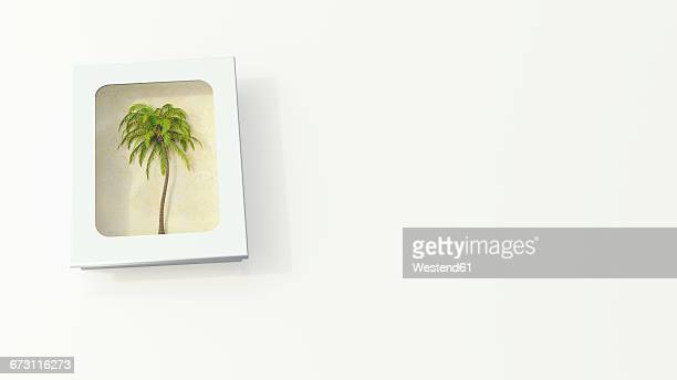 illustrations, cliparts, dessins animés et icônes de palm tree in a white box on white ground, 3d rendering - cocotier