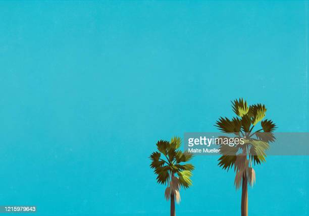 palm trees against blue sky - silence stock illustrations