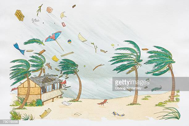 palm trees on beach blowing in hurricane wind, deck chairs, umbrella, ball and blankets flying high up in the air, roof tiles flying off beach hut with smashed glass windows. - hurricane stock illustrations, clip art, cartoons, & icons