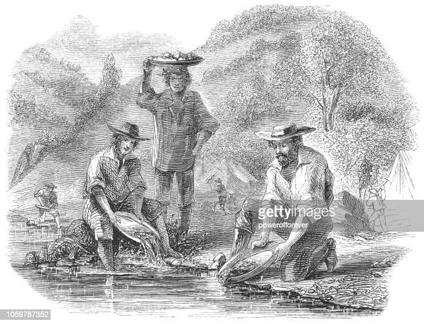 panning for gold at the mokelumne river in california, usa (19th century) - california gold rush stock illustrations