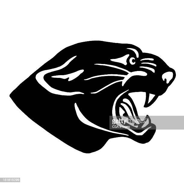 panther growling - wildcat animal stock illustrations, clip art, cartoons, & icons