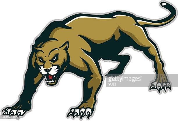ilustraciones, imágenes clip art, dibujos animados e iconos de stock de panther mascot - puma