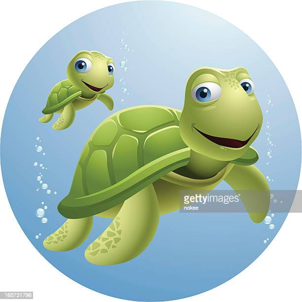 papa and baby turtle - turtle stock illustrations