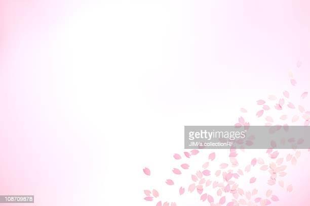 Paper cherry blossom petals