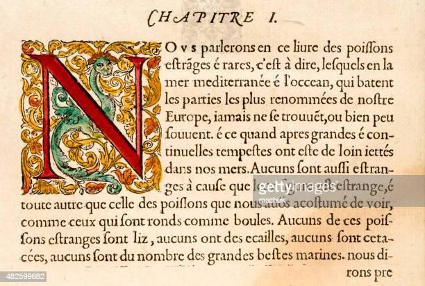 paragraph with illuminated capital letter n, antique 16th century illustration - manuscript stock illustrations