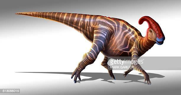 Parasaurolophus dinosaur, artwork