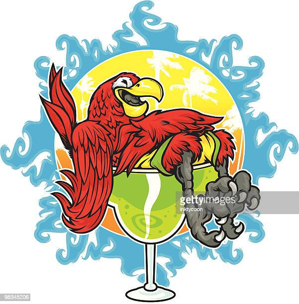 parrot drinking - margarita stock illustrations