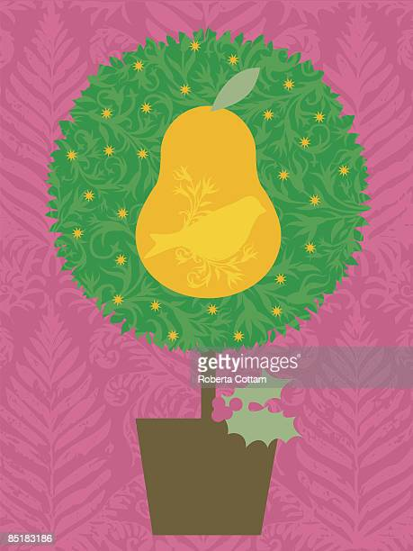 a partridge in a pear tree - number of people stock illustrations, clip art, cartoons, & icons