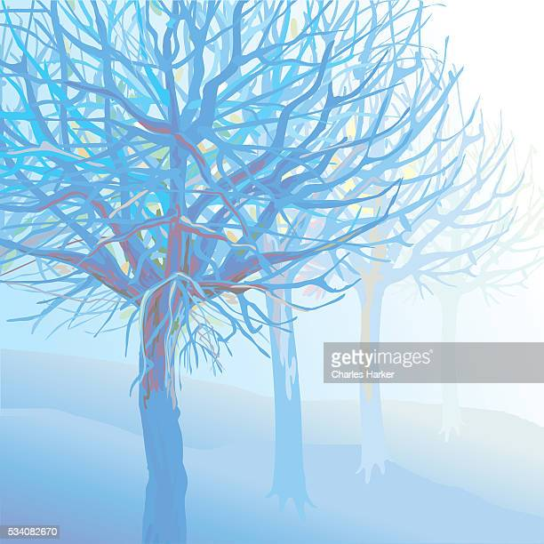 pastel blue trees and branches in foggy landscape illustration - natural parkland stock illustrations, clip art, cartoons, & icons