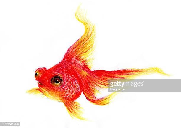 illustrations, cliparts, dessins animés et icônes de pastel illustrated poisson rouge - poisson rouge