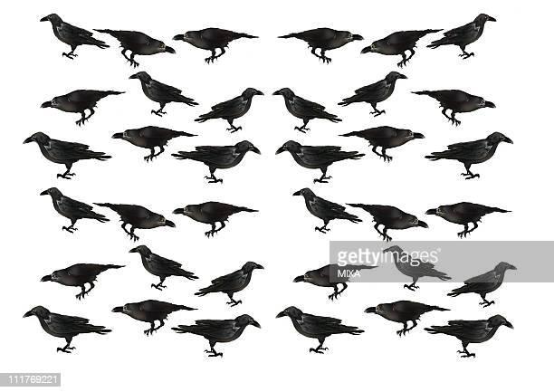 ilustraciones, imágenes clip art, dibujos animados e iconos de stock de pattern of japanese painting, crow - cuervo