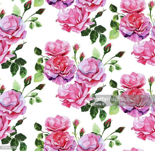 pattern roses seamless, ornament for cloth, wallpaper, background. base watercolor. - rose colored stock illustrations