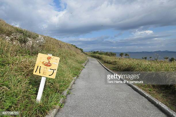 'Pay attention to snake' signboard in Okinawa
