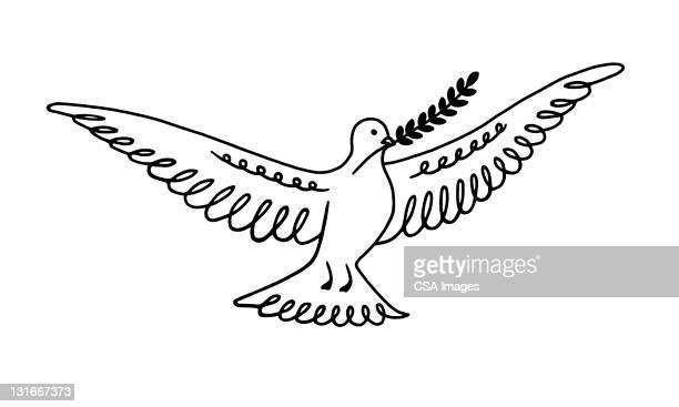 peace dove - branch stock illustrations