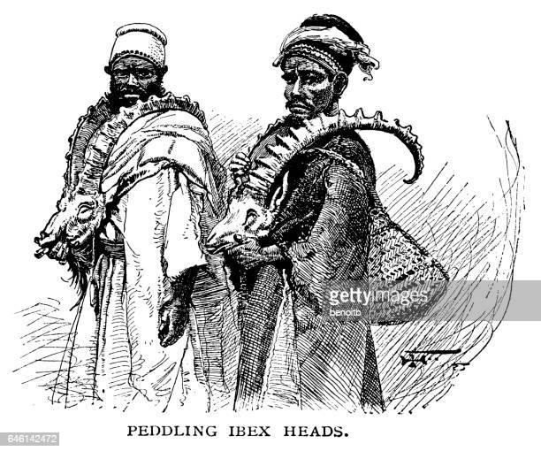 peddling ibex heads - north african ethnicity stock illustrations, clip art, cartoons, & icons