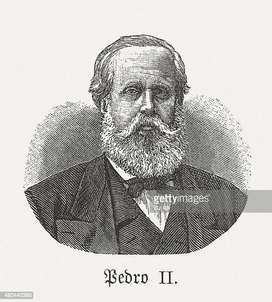 stockillustraties, clipart, cartoons en iconen met pedro ii of brazil (1825-1891), wood engraving, published in 1881 - pedo