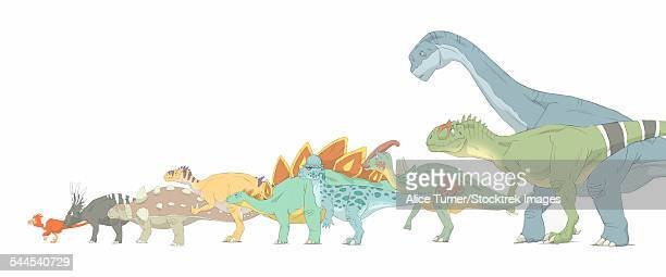 pencil drawing illustrating various dinosaurs and their comparative sizes. - thyreophora stock illustrations, clip art, cartoons, & icons