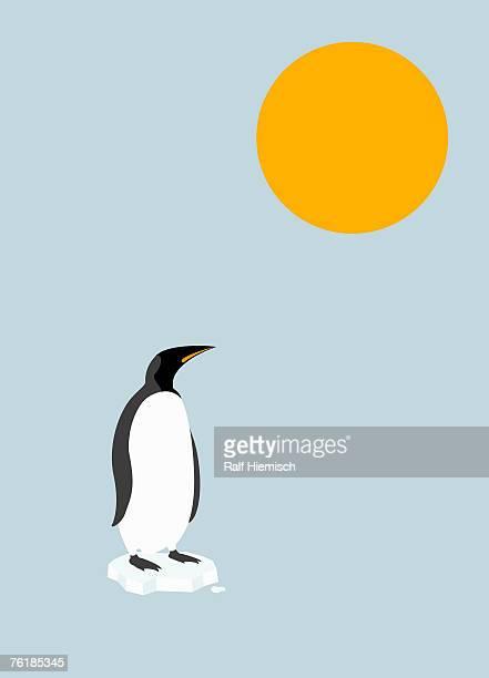 penguin standing on a melting iceberg under the sun - iceberg ice formation stock illustrations
