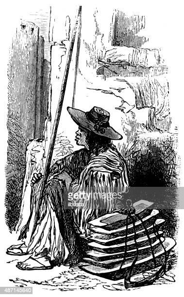 people and traditions of the world: mexican hawker - falconry stock illustrations