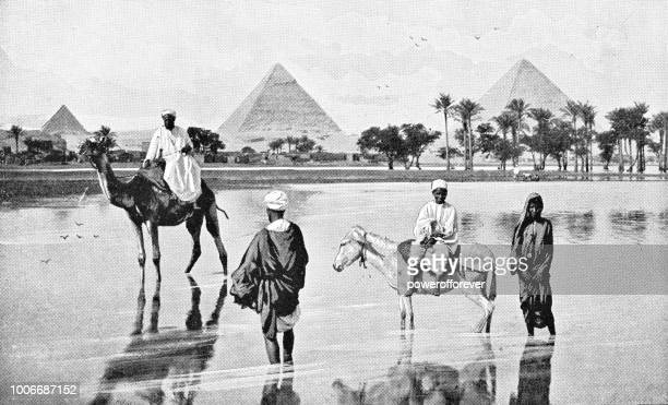 people at the great pyramids in giza, egypt - ottoman empire - mycenae stock illustrations