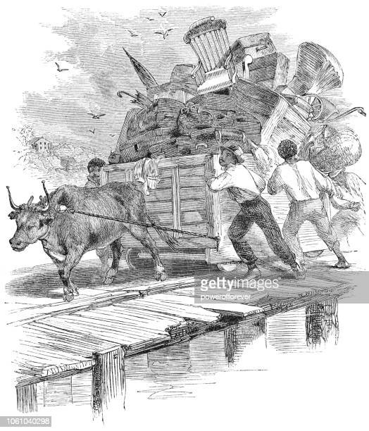 People Moving Their Possessions by Ox and Cart in North Carolina, USA (19th Century)