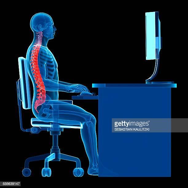 person sitting with correct posture - 人間工学点のイラスト素材/クリップアート素材/マンガ素材/アイコン素材