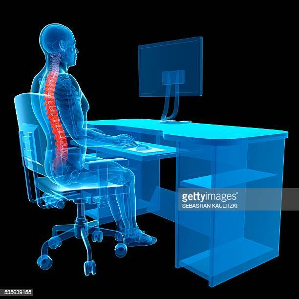person sitting with correct posture - arbeitsstätten stock-grafiken, -clipart, -cartoons und -symbole
